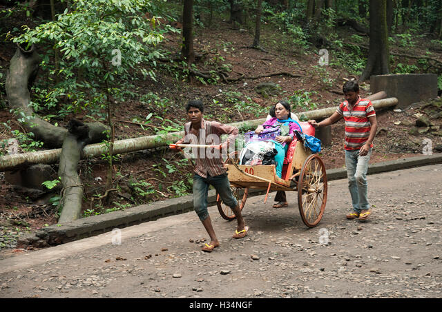 The image of Cart puller with tourist in Matheran, Maharashtra, India - Stock Image