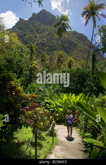 A woman walks through the nature trail at the Natural Hot Water Mineral Falls in St Lucia Petit Piton is visible - Stock Image