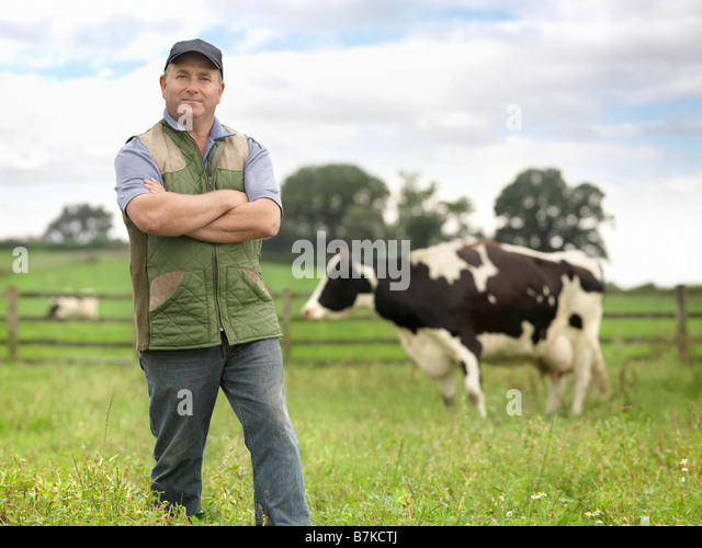 Farmer With Cow In Field - Stock Image
