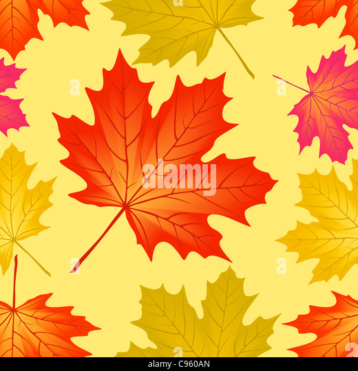 Seamless pattern autumn maple leaves. - Stock Image