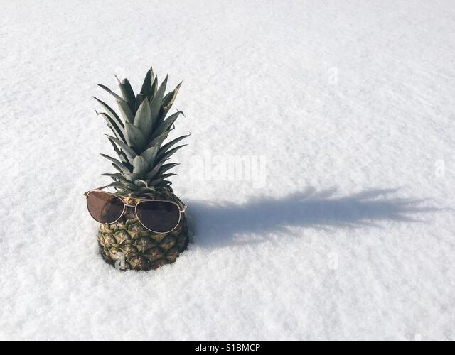 Pineapple with sunglasses in snow - Stock Image