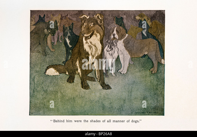 Illustration from The Call of the Wild by Jack London, 1903, 1904; illustrated by Philip R. Goodwin and Charles - Stock Image