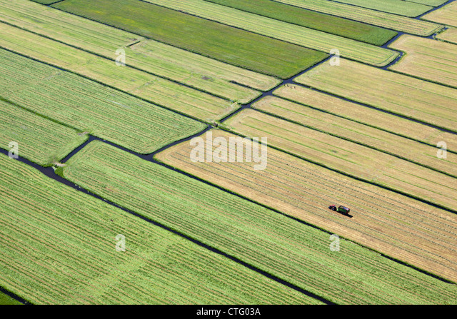 The Netherlands, Broek in Waterland, Farmer with tractor collecting grass. Aerial. - Stock Image