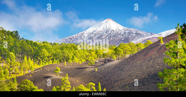 Tenerife - view of Teide Volcano Mount, Canary Islands, Spain - Stock-Bilder