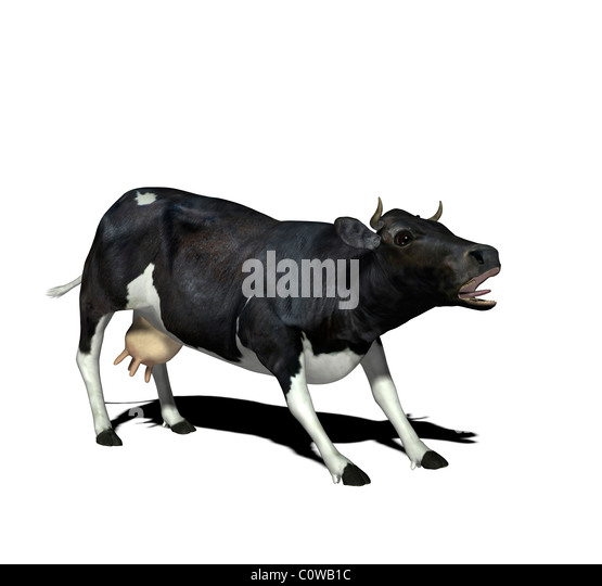 cow illustration - Stock Image