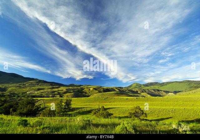 Beautiful Yellowstone landscape. - Stock Image