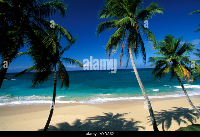 Dominican Republic beach Playa Grande - Stock Image