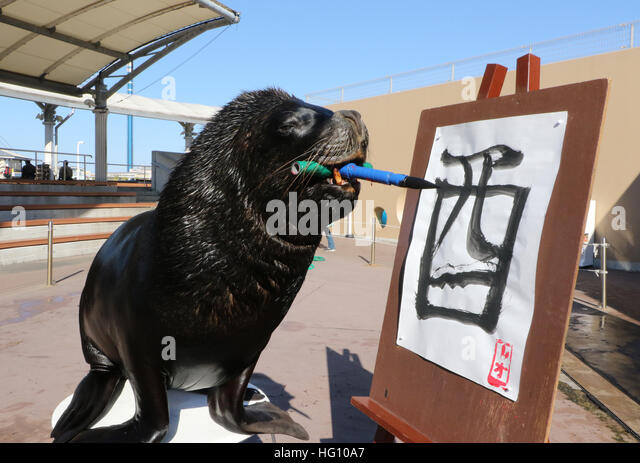 Tokyo, Japan. 3rd Jan, 2017. 15-year-old male sea lion 'Leo' writes the word 'Rooster' in Chinese - Stock Image