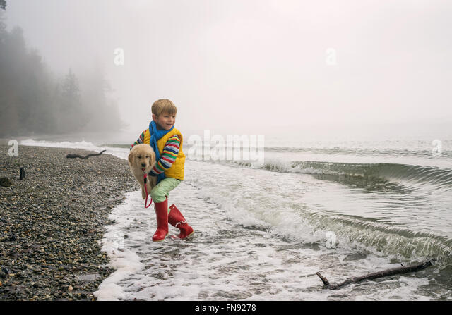 Boy running in surf carrying golden retriever puppy dog - Stock Image
