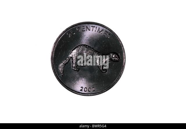 Congolese  25 Centime coin (Democratic Republic) - Stock-Bilder