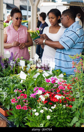 Virginia Roanoke Market Square Farmers' Market plants for sale nursery potted plants shopping for sale flower - Stock Image