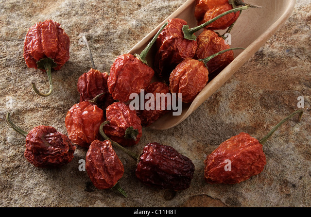 Dried Bell Pepper (capsicum) with a wooden shovel, on stone surface - Stock Image