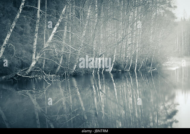 Foggy landscape with gloomy mood and lake at toned photo - Stock Image