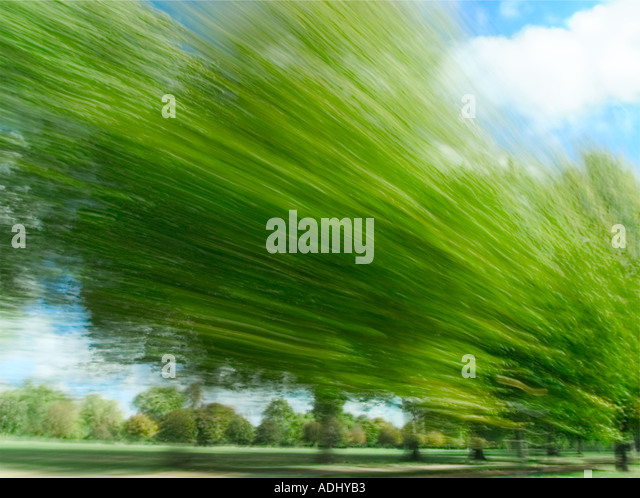 blurred trees looking left into park - Stock Image