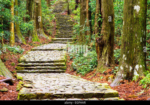 Kumano Kodo at Daimon-zaka, a sacred trail designated as a UNESCO World Heritage site in Nachi, Wakayama, Japan. - Stock-Bilder