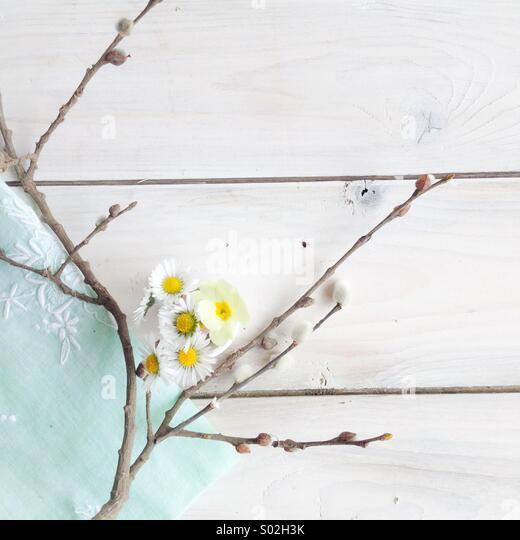 Spring vignette - Stock Image