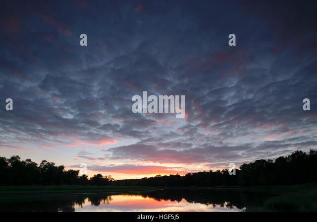 Evening in the Kliekener Aue, Middle Elbe Biosphere Reserve, Dessau, Saxony-Anhalt, Germany - Stock Image