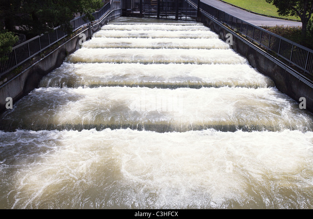 Fish ladders stock photos fish ladders stock images alamy for Bonneville dam fish count