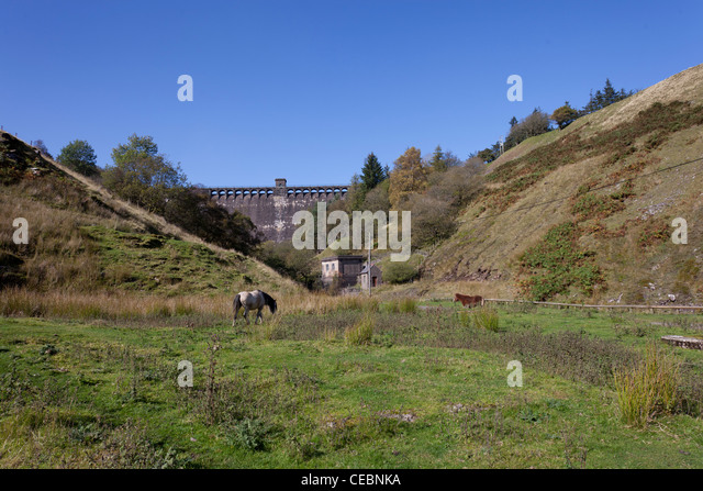 Horse grazing below Grwyne Fawr Reservoir dam in the Black Mountains - Stock Image
