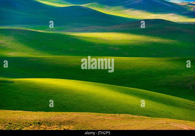 Inner Mongolia, Inner Mongolia, China. 8th Aug, 2017. Inner Mongolia, CHINA-August 8 2017: (EDITORIAL USE ONLY. - Stock Image