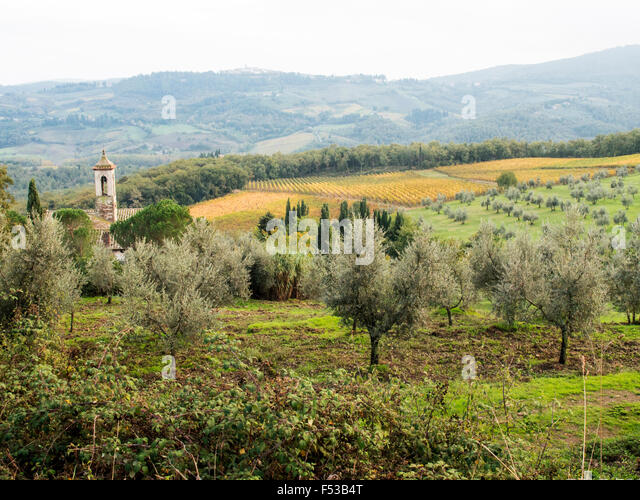Europe, Italy, Tuscany.  Santa Maria Novella Monestery near Radda in Chianti. - Stock-Bilder