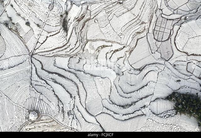 Enshi. 23rd Jan, 2016. An aerial photo taken on Jan. 23, 2016 shows a tea garden covered by snow in Wujiatai Village - Stock Image