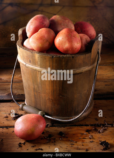Red Rooster potatoes photos, pictures & images - Stock Image