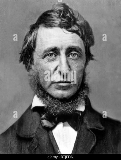 Henry David Thoreau - Stock Image