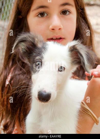young girl holding a puppy - Stock Image