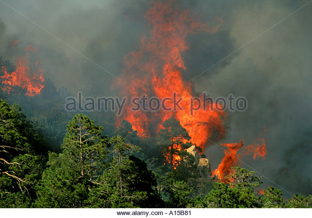 Fireball from Green Mountain Forest Fire in The Catalina   Mountain Range Near Tucson Arizona - Stock Image