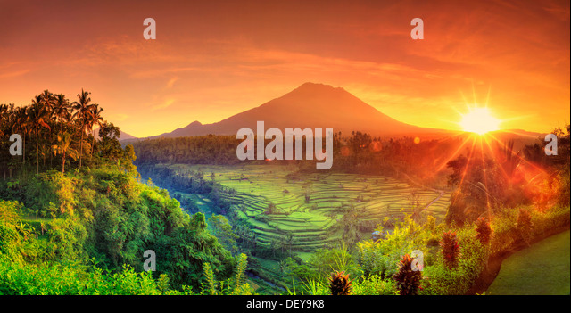 Indonesia, Bali, Redang, View of Rice Terraces and Gunung Agung Volcano - Stock Image