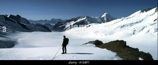 The Aletschhorn from the Walcherhorn, Bernese Oberland, Switzerland - Stock Image