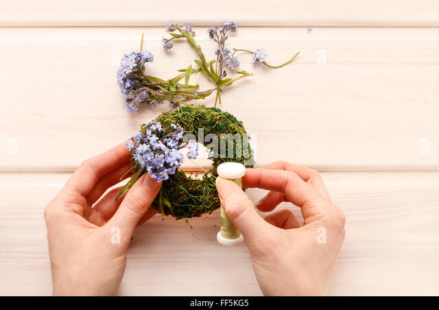Making wreath with forget-me-not flowers. White wooden background. - Stock Image