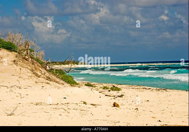 Mexico Cozumel Punta Sur parque ecological park - Stock Image