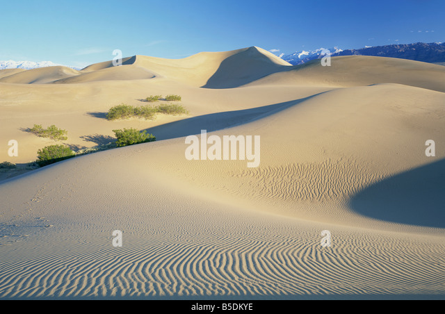 Sand dunes, Death Valley National Monument, California, USA, North America - Stock-Bilder