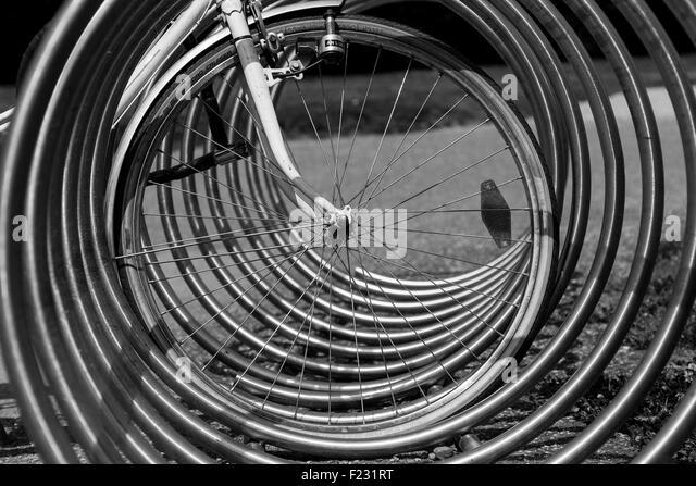Bicycle Rack Perspective - Stock Image