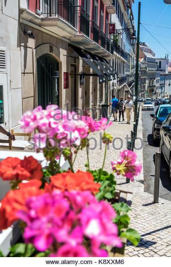 Portugal Lisbon Bairro Alto Rua da Misericordia street scene flowers geraniums city skyline - Stock Image