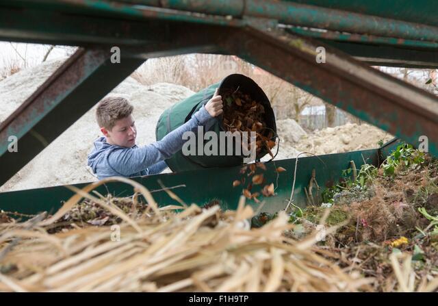 Teenage boy emptying garden waste into recycling bin - Stock Image
