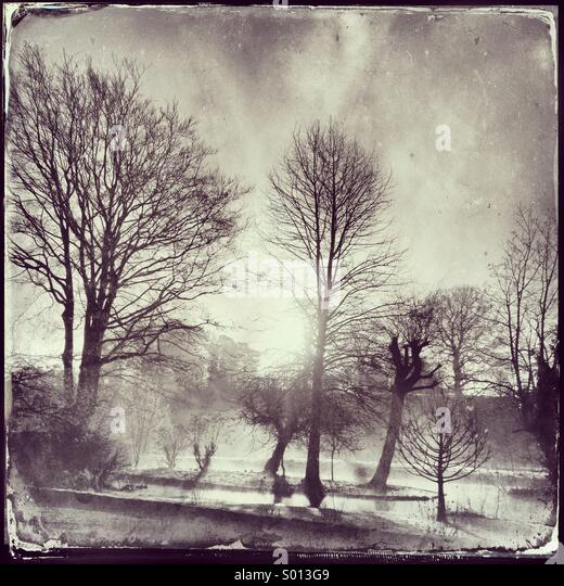 Morning Cotswold Mist - Stock Image