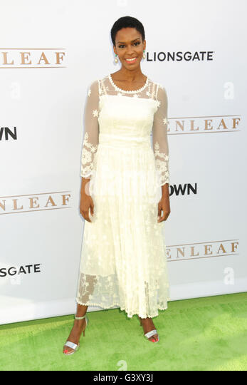 Hollywood, CA, USA. 15th June, 2016. 15 June 2016 - Hollywood, California - Kim Hawthorne. OWN Network's ''Greenleaf'' - Stock Image