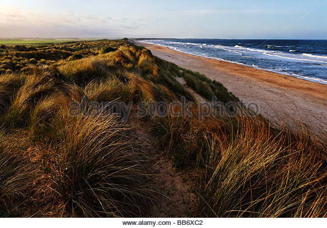 Dunes and beach - Stock Image
