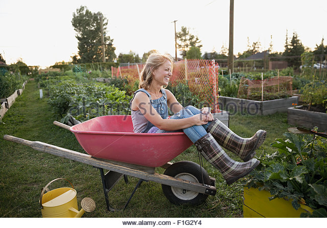 Smiling woman plaid wellingtons sitting wheelbarrow garden - Stock Image