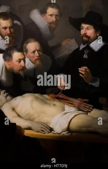 Detail of The Anatomy Lesson of Dr Nicholas Tulp, by Rembrandt, 1632, Royal Art Gallery, Mauritshuis Museum, The - Stock Image