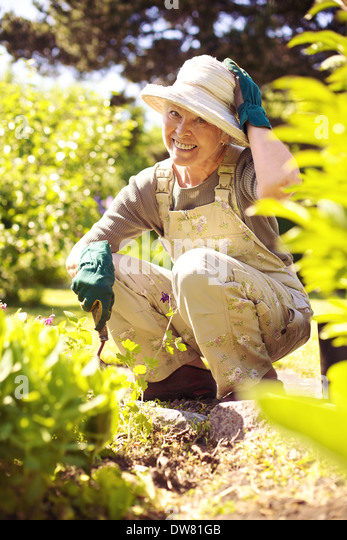 Happy older woman gardening in backyard looking at camera smiling - Stock Image