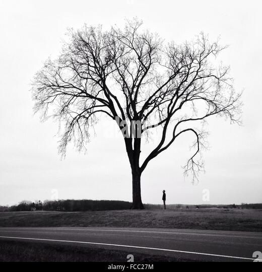 Man Standing Next To Tree - Stock Image
