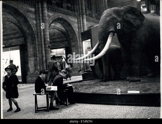 Apr. 05, 2012 - Some of the children who aond the Natural History Museum on Saturdays and school holidays choose - Stock Image