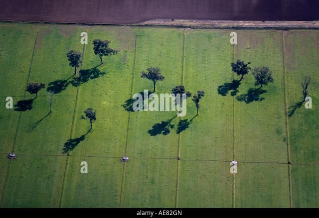 Irrigated farmland Victoria, Australia - Stock Image