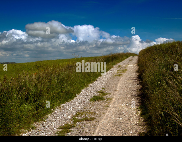 South Downs National Park, Sussex - Stock Image