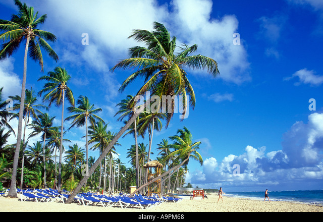 Dominican Republic Punta Cana Bavaro Beach palm trees and sandy beach - Stock Image
