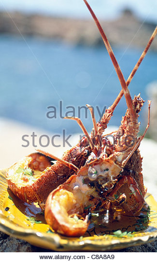 Lobster Plate Stock Photos & Lobster Plate Stock Images ...